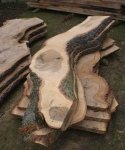 Hampstead oak - curved boards